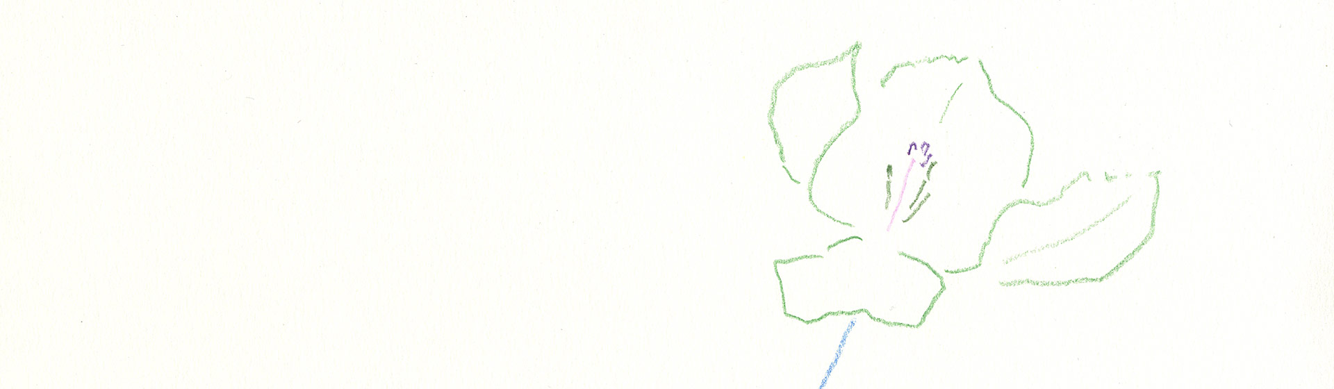 Raimer Jochims - Zeichnung